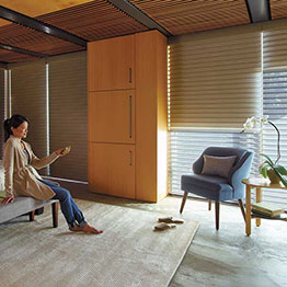 Hunter Douglas > products + services